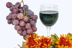 Red grapes with a glass of wine Stock Image