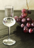 Red grapes grappa Royalty Free Stock Photos
