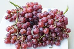 Red Grapes, group of many red grapes. Royalty Free Stock Images