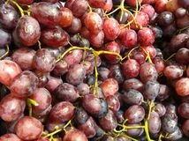 Red grapes. Heap of red grapes Royalty Free Stock Image