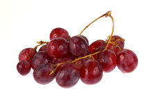 Red grapes isolated Royalty Free Stock Photography