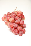 Red grapes on isolated white Royalty Free Stock Photo