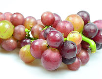 Red Grapes isolated on white background. Fresh grape fuits isolated on white background Stock Image