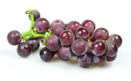 Red Grapes isolated on white background. Fresh grape fuits isolated on white background Royalty Free Stock Photography