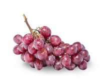 Red grapes isolated on white close-up Royalty Free Stock Photos