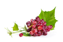 Red grapes isolated on white Stock Photography