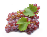 Red grapes with leaves Stock Photos