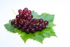 Red grapes and leaves with water drops.  stock photo