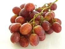 Red grapes gourmet treat, winemaking royalty free stock photo