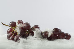 Red grapes in snow white background Stock Images