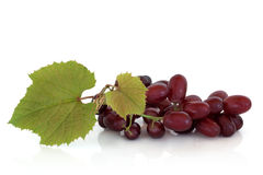 Red Grapes on the Vine. Isolated over white background with reflection royalty free stock images