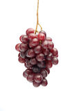 Red grapes on white background Royalty Free Stock Image