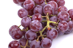 Red grapes on a white background Stock Photography
