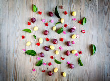 Red grapes and white flowers Royalty Free Stock Images