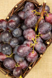 Red grapes in a wicker basket Royalty Free Stock Images