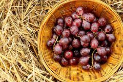 Red grapes in a wicker basket on straw royalty free stock photography