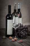 Red grapes with wine bottles Royalty Free Stock Photos