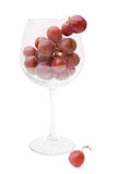 Red grapes in a wine glass Stock Photos