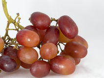 Red grapes2 Stock Images