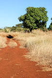 Red Gravel Road. Red gravel road in northern Madagascar Stock Image