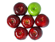 Red and Green Royalty Free Stock Image