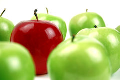 Red among Green. One Red Apple stands out among many Green Stock Image