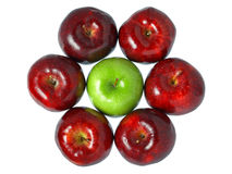 Red and Green Royalty Free Stock Photography