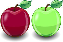 Red and green apple,vector Stock Photography