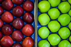 Red and green apples. This year´s Royalty Free Stock Images