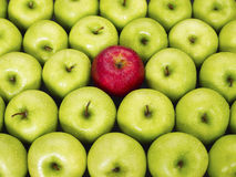 Red and green apples. Red apple standing out from large group of green apples. Horizontal shape Stock Photo
