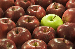 Red and Green Apples. Close up of red and green apples royalty free stock image