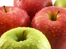 Red and green apples. Some red and green apples in a white background royalty free stock images