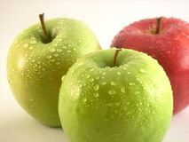 Red and green apples. Some red and green apples in a white background stock image
