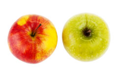 Red and green apples isolated Royalty Free Stock Photography