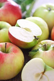 Red and green apples with leaves Stock Photography