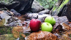 Red green apples in natural waterfall Stock Images