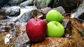 Red green apples in natural waterfall and stone blackground Stock Image