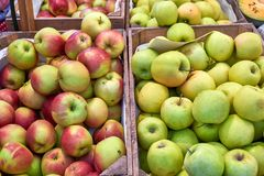 Red and green apples. For sale at a market royalty free stock photo