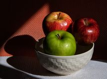 Red and green apples in the sun royalty free stock images