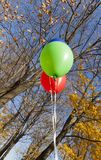 Red green ball. Several colorful balloons in the aun season, against a blue sky and fallen yellow foliage of trees stock photo