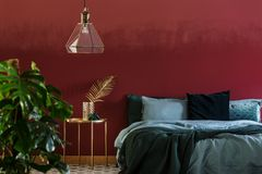 Red and green bedroom interior. Lamp above gold table next to emerald green bed in bedroom interior with plant and red wall royalty free stock images