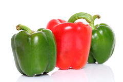 Red & green bell pepper Royalty Free Stock Photography