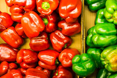 Red and green bell pepper foor food, Colourful to food Stock Photos