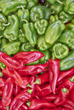Red and green bell peppers Stock Image