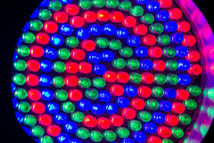 Red,green and blue leds. Close-up of red,green and blue leds royalty free stock photo