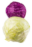Red And Green Cabbage III Stock Photography