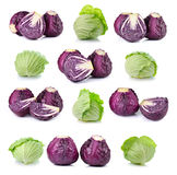 Red and green cabbage isolated on white background Royalty Free Stock Photography