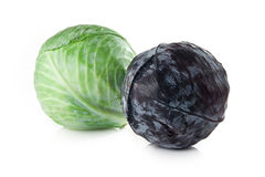 Red and green cabbage on white background Stock Photography