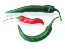 Red and Green Chili. Path and white isolated Red & Green Chili Royalty Free Stock Photo