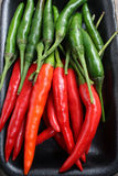 Red and green chili Stock Photography